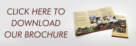 brochure-download-thumbnail